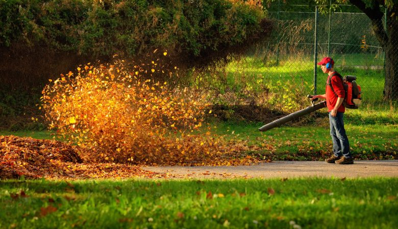 Best gas leaf blower reviews